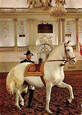 BR44101 Spanische Reitschule am langen Zugel horses chevaux animaux animals