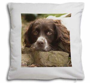 Springer Spaniel Dog Soft Velvet Feel Scatter Cushion, Christmas Gift AD-SS1-CPW