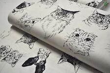 Alexander Henry USA Tissu design 0,5 m CHATS CHATONS KITTY KITSCH ART TYPE B
