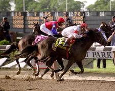 Sarava 2002 Belmont Stakes Photo 8x10