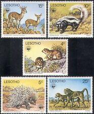 Lesoto 1977 WWF/Babuino/Antílope/Puercoespín/animales/Naturaleza/vida salvaje 5 V Set b1385