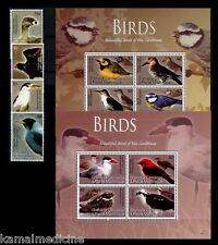 Birds of Caribbean, Grenada Grenadine 2009 MNH 2 SS + 4v Set  ( B3)