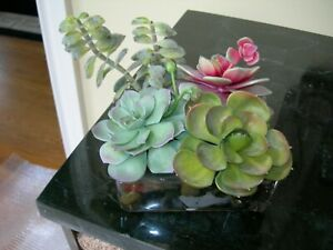NDI Faux Floral Arrangement Succulents in Acrylic Water Multicolor Rock Bed  #1