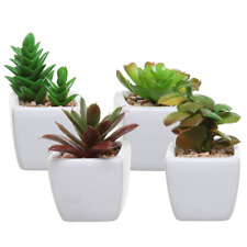 Set of 4 Small Green Plastic Artificial Succulent Plants in Mini Modern White