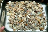 Parcel of Natural Australian Potch and Colour Rough Opal 3110.3ct (3481)