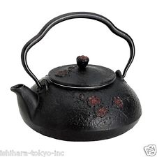Nanbu Tetsubin - Shinonome (dawn design) 0.4 Liter : Japanese Cast Iron Tea Pot