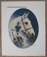 Desert Orchid Portrait Fine Art Horse Racing Picture by Roy Miller