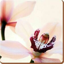 Set of 4 Elegant Orchid Placemats and Coasters