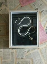 SALE TAXIDERMY SNAKE SKELETON-   VENOMOUS SPEICES WITH  FANGS , BOX CASED