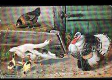 VOLAILLE / POULE OIE DINDE & POUSSIN ... illustré par Alfred SCHONIAN à MUNCHEN