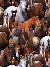 Fat Quarter Horse ANIMAUX de FERME quilting Tissu coton Elizabeth's studio
