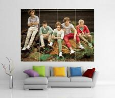 ONE DIRECTION 1D GIANT WALL ART PICTURE PRINT POSTER H17
