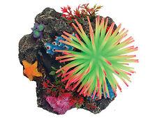 Aqua Spectra Coral Reef & Anemone with Suction Cups 3D Aquarium Background 28432