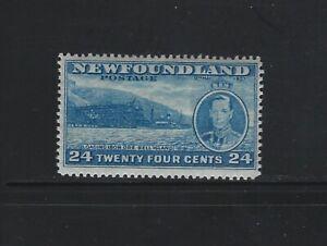 NEWFOUNDLAND - #241 - 24c KING GEORGE VI LONG CORONATION ISSUE MINT STAMP MNH