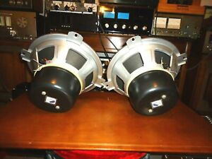 ISOPHON P30/37A  12 INCH ALNICO  SPEAKERS  MADE  IN  GERMANY