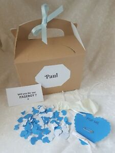 Will you be our pageboy, balloon in a box, wedding planning,