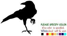 "CROW RAVEN BLACKBIRD Funny Vinyl Decal Sticker Car Window laptop tablet truck 9"""