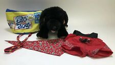 Build A Bear Workshop Dog Puppy Black Plush Stuffed Collar Leash Outfit Backpack