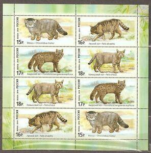 Russia: mint sheetlet, Fauna of Russia - Wildcatsn, 2014, Mi#2067-70, MNH