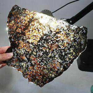 256g Slice meteorites, Rare slices of Kenyan Pallasite olive meteorite