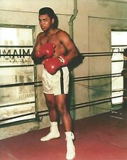 MUHAMMAD ALI 8X10 PHOTO BOXING PICTURE COLOR FULL STANCE POSE IN GYM