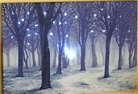 "Led Lighted Forest Canvas Wall Art Large Size 23-5/8"" x 15-7/8"""