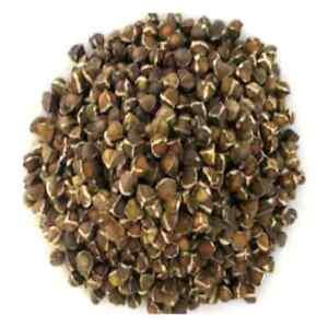 Moringa Seeds 100+ Natural Fresh Seeds 100% Sri Lankan Drumsticks Free shipping