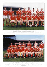 Cork All-Ireland Senior Football & Hurling Champions 1990: GAA Print