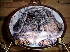 Bradford Exchange BUNNY TALES Quite An Earful Plate