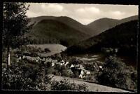 Badenweiler Schwarzwald alte Ansichtskarte ~1950/60 Waldpartie am Schweighof