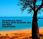 bush2beach