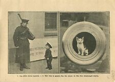 WWI British Army Trainee Recruitment London/Gun Dreadnought UK 1915 ILLUSTRATION