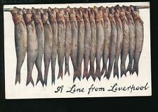 Lancashire Lancs LIVERPOOL  Fish A Line from 1907 Tuck Oilette #9373 PPC
