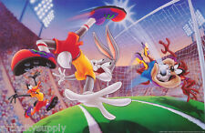 POSTER : ANIMATION: TV - LOONEY TUNES - SOCCER - FREE SHIPPING !  #1403 RAP14 A