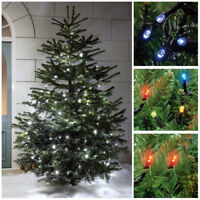 LED In / Outdoor Christmas Fairy String Lights White Multi Xmas Decoration Tree