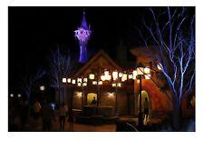 Disney World Orlando TANGLED Movie Rapunzel Tower Signed Artwork - Magic Kingdom