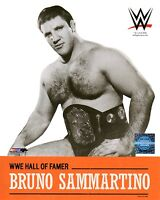 "BRUNO SAMMARTINO WWE PHOTO 8x10"" OFFICIAL WRESTLING PROMO"