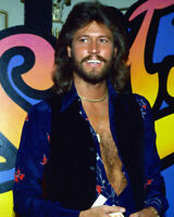 236531 The Bee Gees Color graph Barry Gibb WALL PRINT POSTER US
