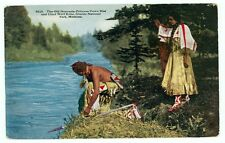Montana, Glacier National Park, Chief Wolf Robe (pre-20 unmailed (indians576