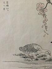 Kono Naotoyo Bairei estampe japonaise canard fleur maître Kacho-e XIX e Japon