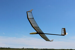 NEW RC Model Classic HLG Trotter - carbon Kit High quality sailplane - SALE