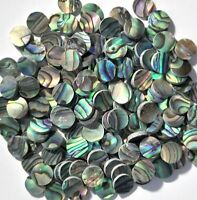 50 Dots Inlay Paua Abalone 5mm x 1.5mm thickness