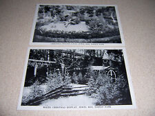 1940s WHITE CHRISTMAS DISPLAY JEWEL BOX FOREST PARK ST. LOUIS MO. POSTCARD LOT