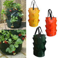 Strawberry Grow Bags Plant Hanging Flower Home Garden Use Planter Pouch Herb Bag