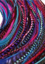 "Plumas De Cabello 10 largo Baya Rosa Azul y Púrpura Pluma Extensiones de Cabello 5-11"""