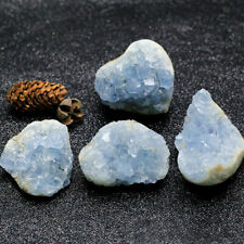 1PC Natural Raw Blue Celestite Crystal Quartz Cluster Geode Specimen Reiki Stone