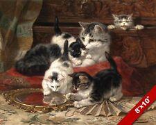 PLAYFUL PLAYING KITTENS CAT KITTEN PET ANIMAL ART PAINTING REAL CANVAS PRINT