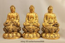 Tibet Buddhism Pure Copper lotus three Amitabha Tathagata Sakyamuni Buddha Set