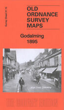 OLD ORDNANCE SURVEY MAP GODALMING MEATH HOME CROWNPITS HOLLOWAY HILL 1895