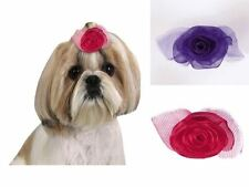 Dog Puppy Barrette - Spring Fling - Aria - Set of 4 Bows - Purple & Pink